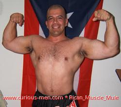 Rican_Muscle_Mule